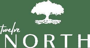 12 North Logo